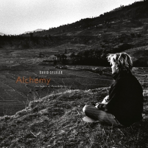 David Sylvian - Alchemy: An Index of Possibilities (LP)