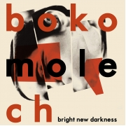 "Bokomolech - Bright New Darkness (12"" Vinyl)"