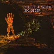 Big Sleep - Bluebell Wood (LP)