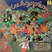 Tea & Symphony - An Asylum For The Musically Insane (LP)