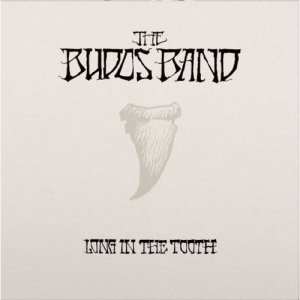 The Budos Band - Long In The Tooth (LP)