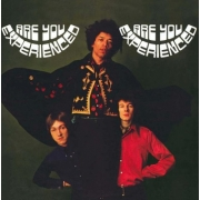The Jimi Hendrix Experience - Are You Experienced (2LP)