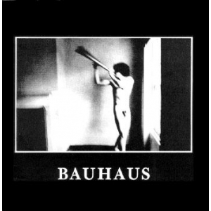 Bauhaus - In The Flat Field (LP+CD)
