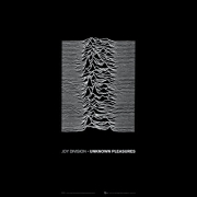 Joy Division - Unknown Pleasures (2CD)