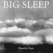 Big Sleep - Moonlit Days (CD)