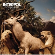 Interpol - Our Love To Admire (CD)