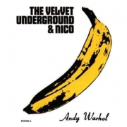The Velvet Underground & Nico - The Velvet Underground & Nico: 45th Anniversary Edition (LP)