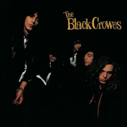 Black Crowes - Shake Your Money Maker (CD)