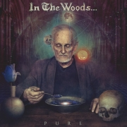 In The Woods - Pure (2LP)