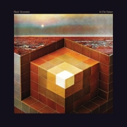 Black Mountain - In The Future (2LP)
