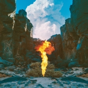 Bonobo - Migration (CD)