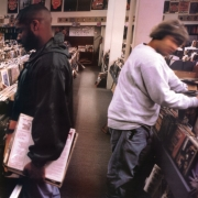 DJ Shadow - Endtroducing ... (2LP)