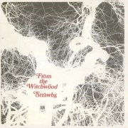Strawbs - From The Witchwood (CD)
